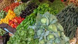 Nyári zöldségrakottas