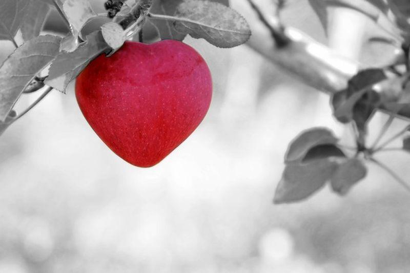 Mire figyeljünk, amikor szerelembe esünk?