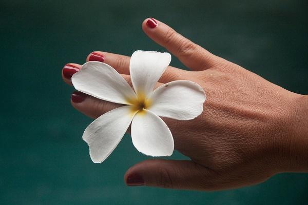 Mit tegyünk, ha nagyon kiszáradt a kezünk? Mire jó a propoliszos kézkrém? Leteszteltük!