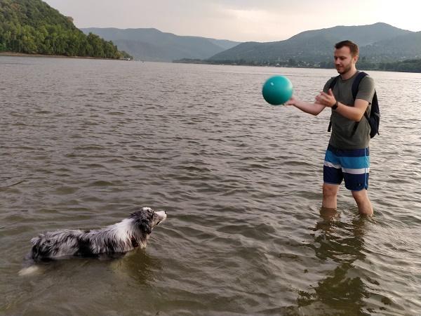 Megharapta a saját kutyáját a humorista