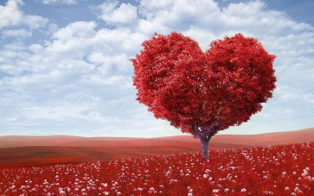 Szerelem: kockázatok és mellékhatások miatt kérjük olvassa el a tájékoztatót!