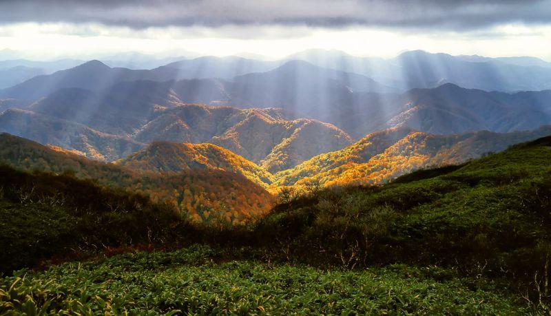 Mondj igent az életre! - Az őszi megújulás 7 lépcsője