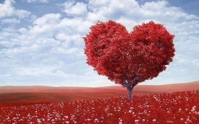 Illem és trend Valentin-napra