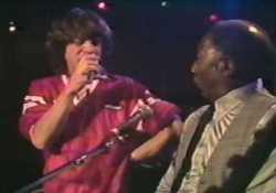 Muddy Waters és a Rolling Stones 1981-es koncertje CD-n és DVD-n