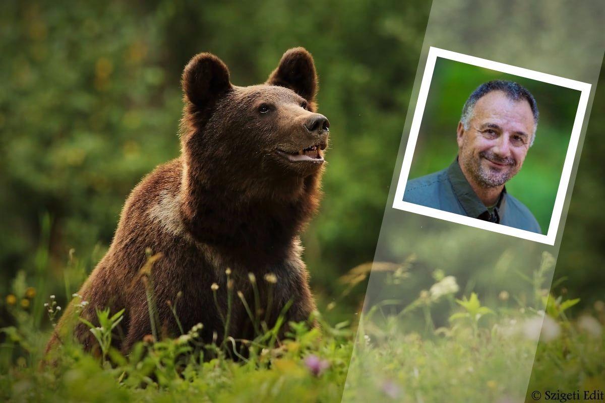 Medvepásztorként találta meg a boldogságot az egykor dúsgazdag vállalkozó