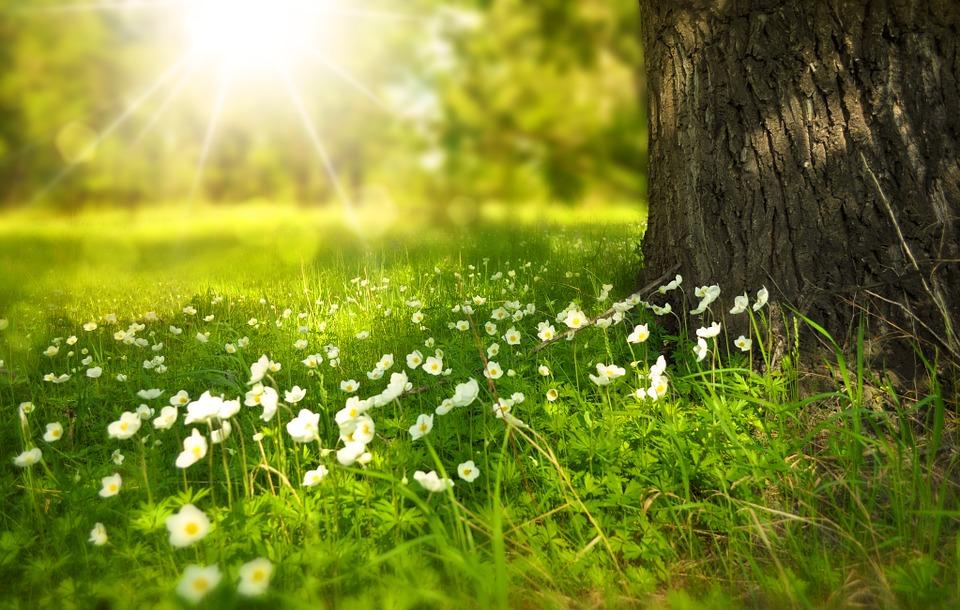 Ma van a tavaszi napéjegyenlőség!