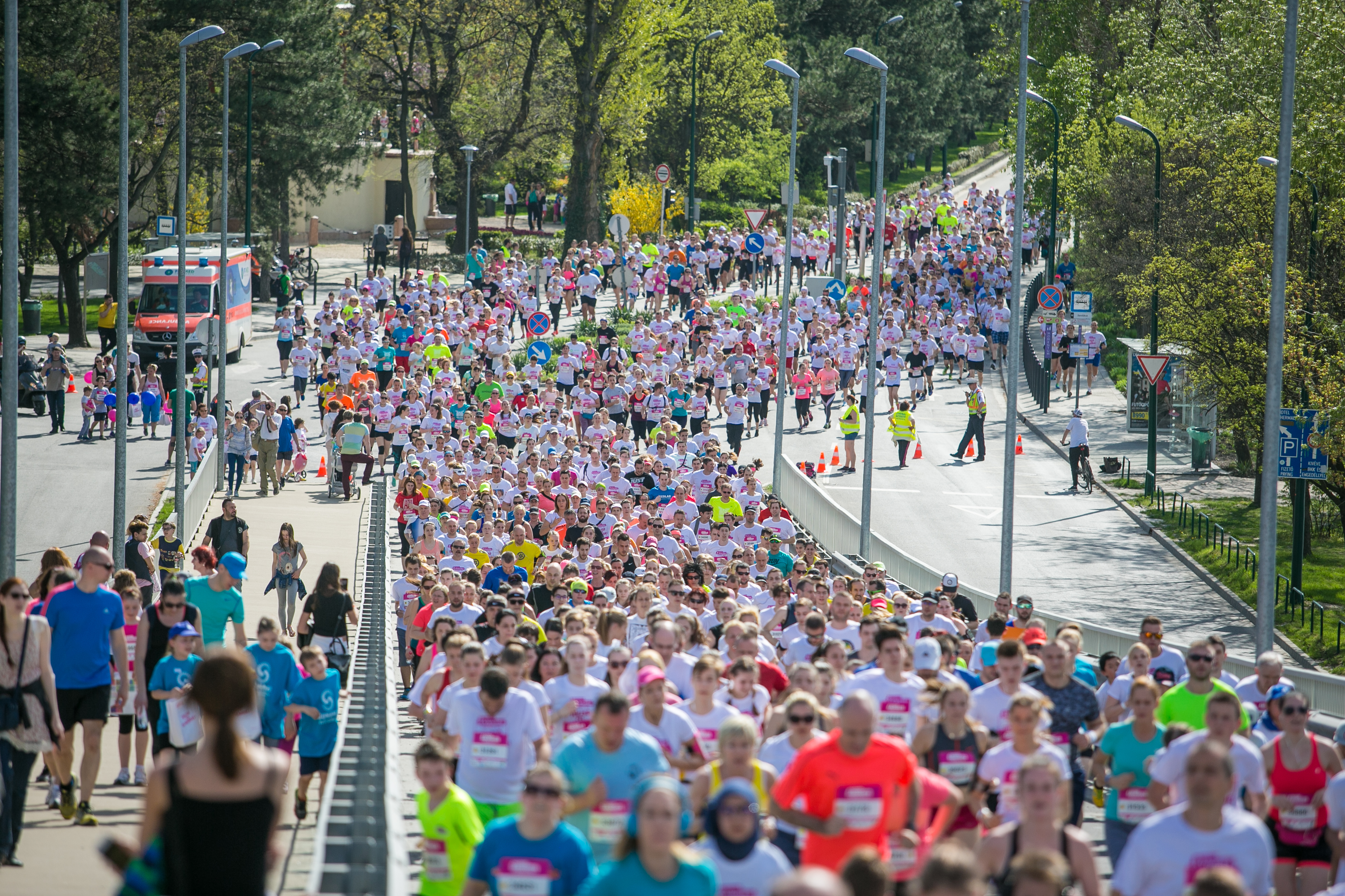 Harmincezer futót várnak az idei Vivicittára